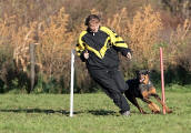 Turnierhundsport-Slalom